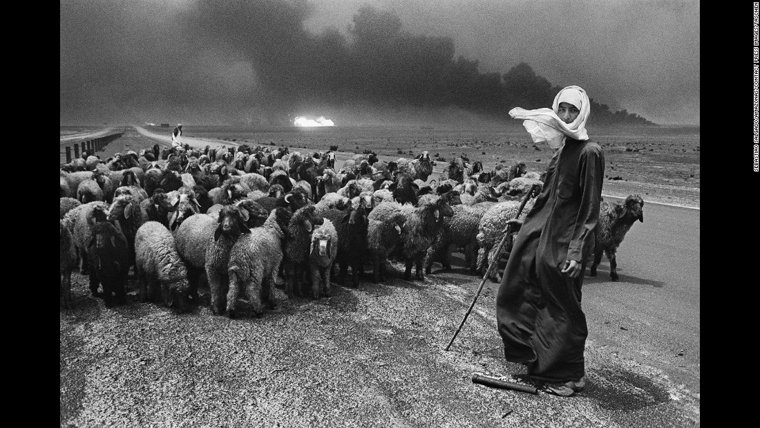 A man herds sheep, their fur blackened by soot.