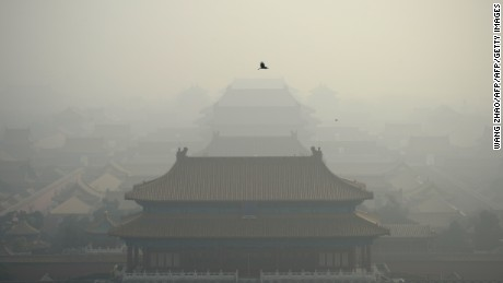 Pollution-proofing your life