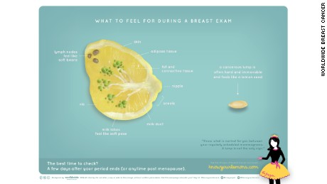 To raise awareness about breast cancer, a modified lemon slice illustrates breast anatomy.