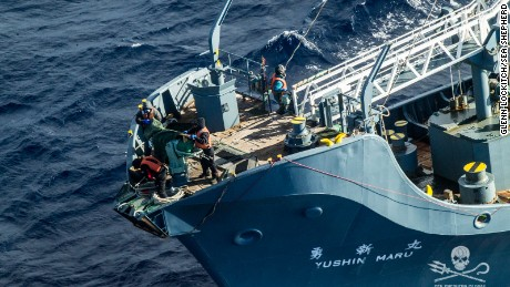 The Japanese vessel Yushin Maru. Sea Shepherd says it caught a Japanese ship with a dead whale on board in violation of international law.