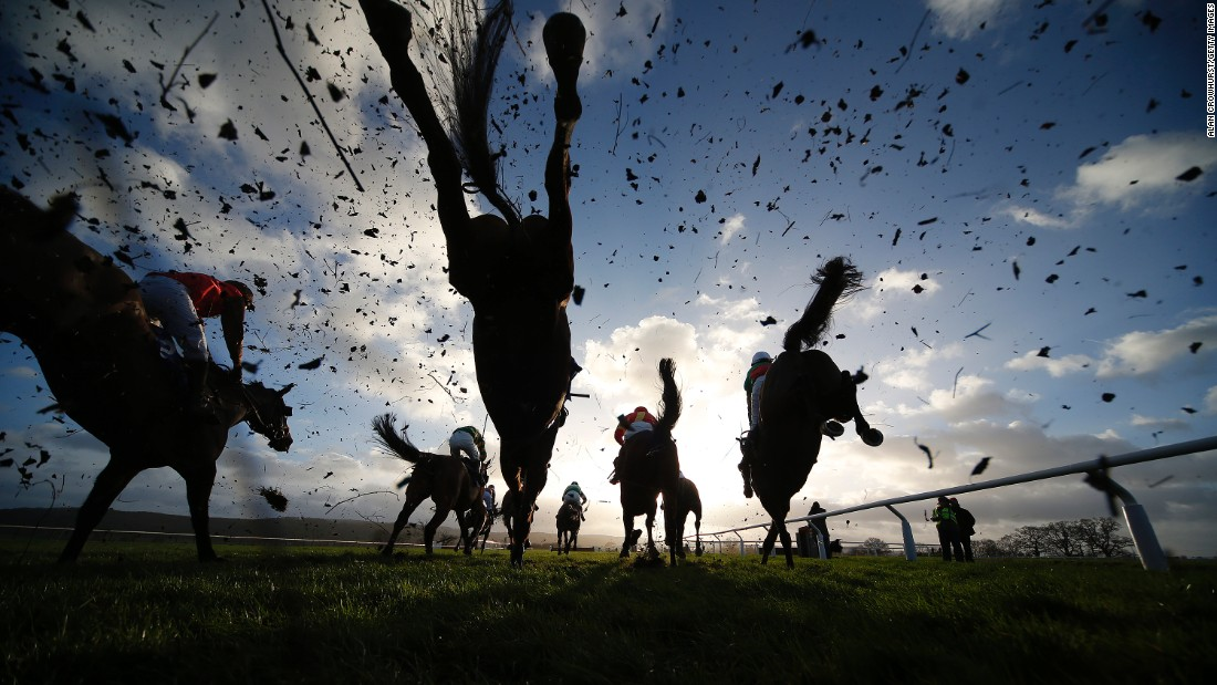 Horses leap over a fence at Taunton Racecourse on January 11 in Taunton, England.