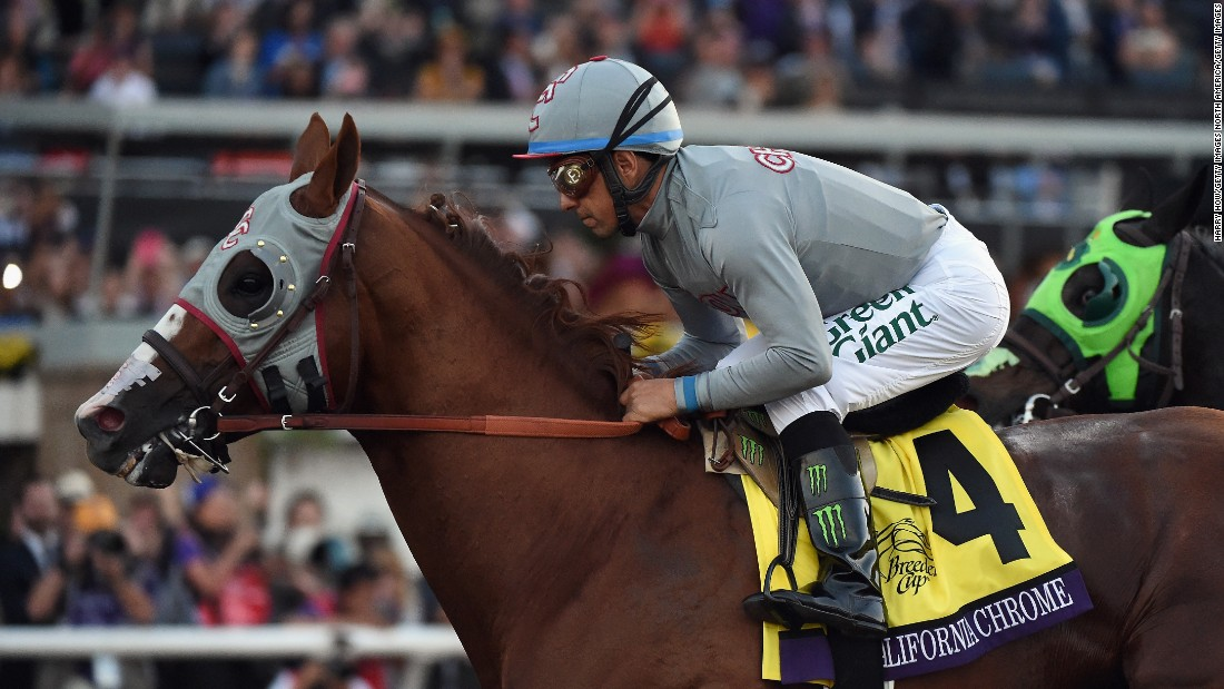 The Pegasus World Cup is expected to be the final race for California Chrome. The American thoroughbred has enjoyed a remarkable career with notable victories at the Kentucky Derby and the Preakness Stakes in 2014.