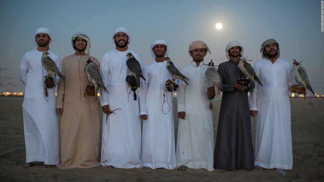 an examination of falconry in the uae