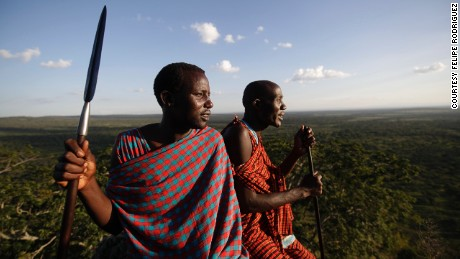 Lion-killer Maasai turn wildlife warriors to save old enemy