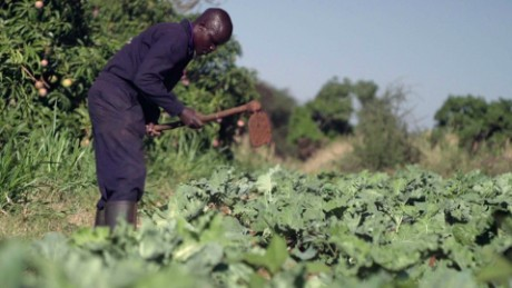 The farming network: CNN takes a closer look at some answers to famine