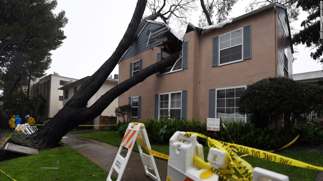 A Los Angeles apartment building is damaged after a 75-foot-tall tree crashed into it on Friday, February 17.