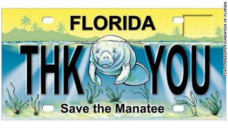 Saving the manatee: Should they stay listed as endangered?