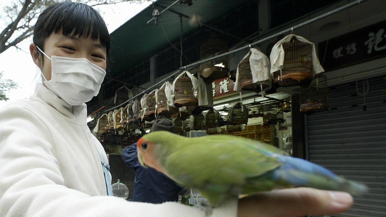 40 reasons Hong Kong is world's greatest city   CNN Travel