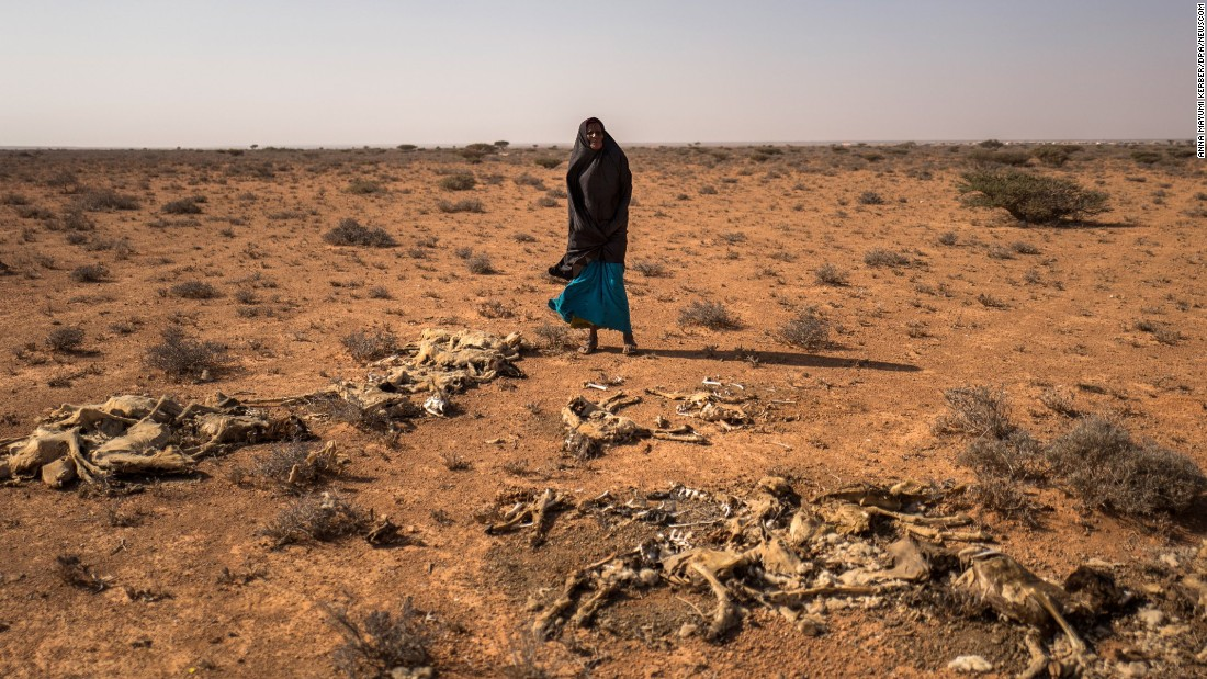 Saida Mousseh Mohammed Hassan looks at the remains of her dead goats near the Somali village of Uusgure on Wednesday, February 22. A severe drought in the country has left millions of people depending on humanitarian aid. Many nomadic herdsmen have lost their stock of goats and camels.