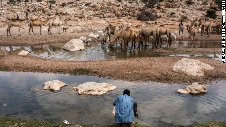 People travel long distances to reach this river near Dhudo, in northern Somalia, because it still has water.