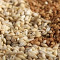 buckwheat grain stock