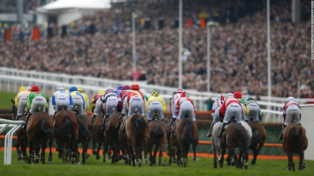 Runners turn into the straight in front of a packed Grand Stand for the Ultima Handicap Chase on the first day. The race was won by Un Temps Pour Tout -- the third horse ever to claim back-to-back victories.