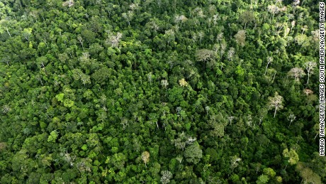 NEAR ALTAMIRA, BRAZIL - JUNE 15: The Amazon rainforest is seen near construction of the Belo Monte dam complex in the Amazon basin on June 15, 2012 near Altamira, Brazil. Belo Monte will be the world's third-largest hydroelectric project and will displace up to 20,000 people while diverting the Xingu River and flooding as much as 230 square miles of rainforest. The controversial project is one of around 60 hydroelectric projects Brazil has planned in the Amazon to generate electricity for its rapidly expanding economy. While environmentalists and indigenous groups oppose the dam, many Brazilians support the project. The Brazilian Amazon, home to 60 percent of the world's largest forest and 20 percent of the Earth's oxygen, remains threatened by the rapid development of the country. The area is currently populated by over 20 million people and is challenged by deforestation, agriculture, mining, a governmental dam building spree, illegal land speculation including the occupation of forest reserves and indigenous land and other issues. Over 100 heads of state and tens of thousands of participants and protesters will descend on Rio de Janeiro, Brazil, later this month for the Rio+20 United Nations Conference on Sustainable Development or 'Earth Summit'. Host Brazil is caught up in its own dilemma between accelerated growth and environmental preservation.  (Photo by Mario Tama/Getty Images)