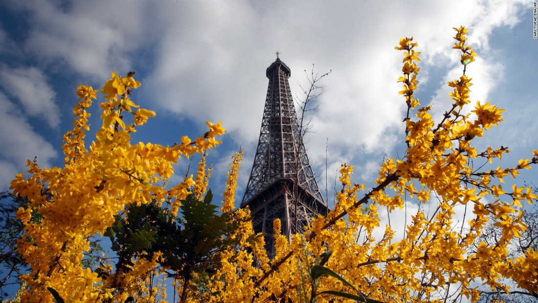 The Eiffel Tower is seen behind blossoming trees in Paris on Tuesday, March 14.