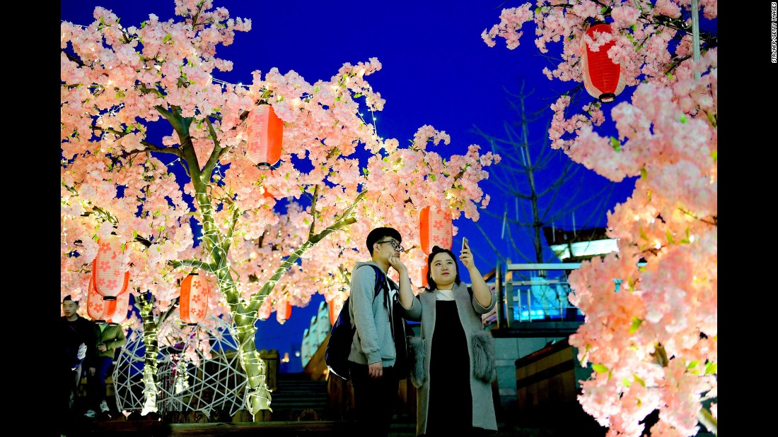 Tourists take selfies among peach-tree displays in Shenyang, China, on Sunday, March 26.
