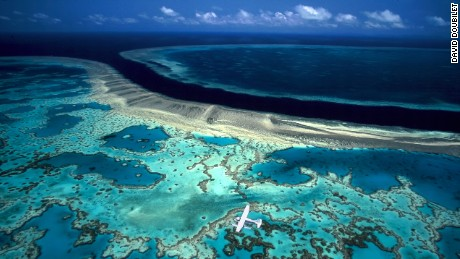 The Great Barrier Reef is literally in hot water