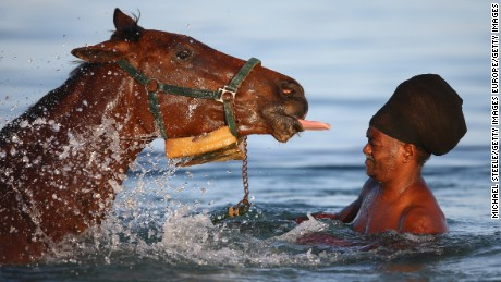Why do race horses love the beach?