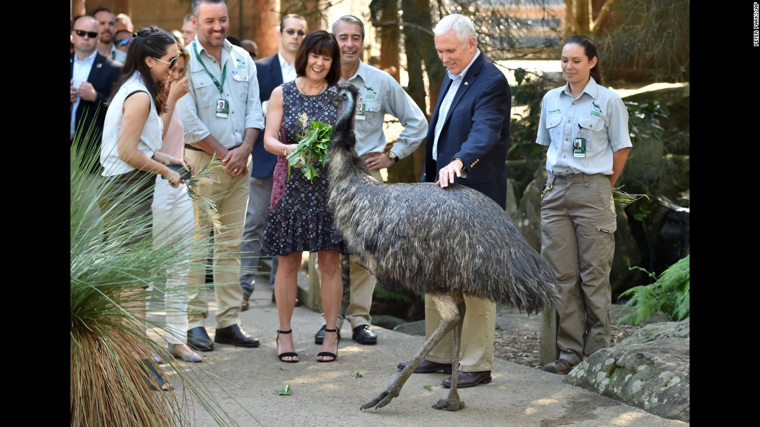Vice President Mike Pence pets an emu as he and his family visit the Taronga Zoo in Sydney on Sunday, April 23. Pence was on the last part of a four-country trip.