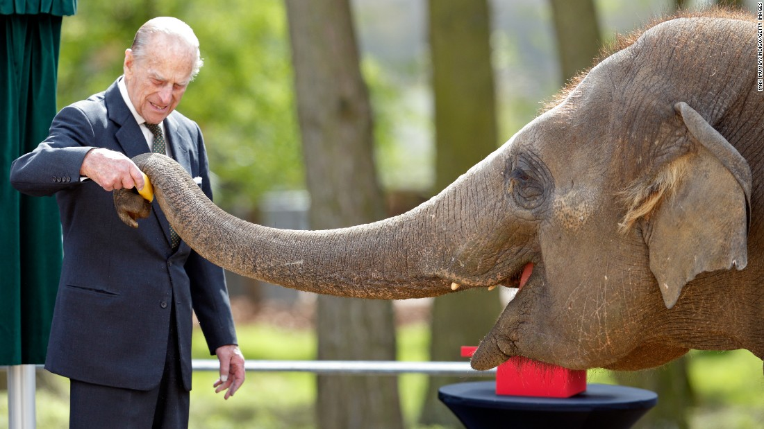 Prince Philip feeds a banana to an elephant in Dunstable, England, in April 2017.