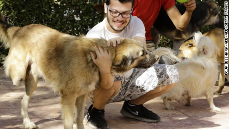 Syrian volunteers play with animals at a farm-turned-shelter run by the Syrian Team for Animal Rescue (STAR), in Sahnaya, 14 kilometres (nine miles) southwest of Damascus, on October 18, 2016.  The shelter is home to dogs and cats, but also more exotic animal victims of the conflict, including turtles and colourful birds. Many are being treated for war wounds or animal abuse, which volunteers say has increased since the conflict began, while others were left behind by owners fleeing violence around Syria's capital.  / AFP / LOUAI BESHARA        (Photo credit should read LOUAI BESHARA/AFP/Getty Images)