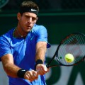 Del potro french open