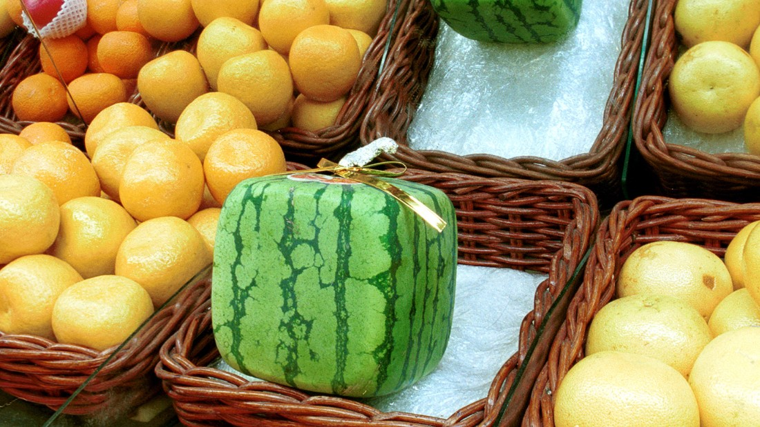 The square watermelon is an expensive decorative fruit in Japan, but it was actually created for more practical reasons. It was invented in 1978 by Tomoyuki Ono.