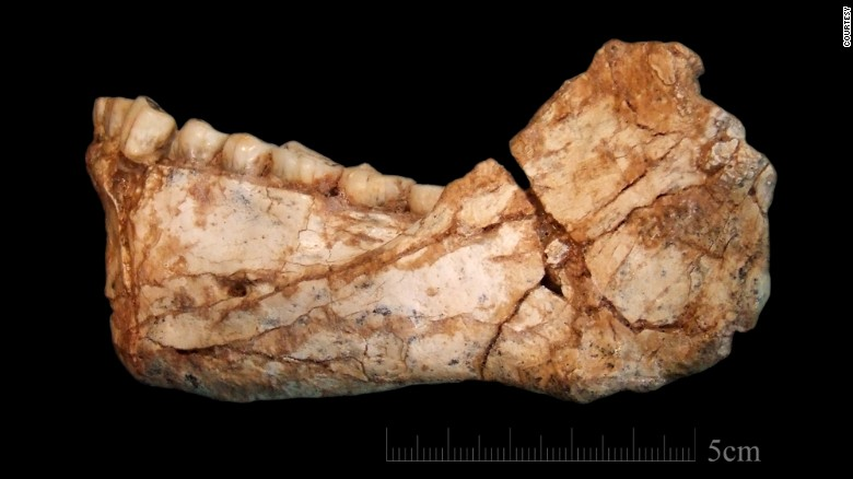 Earliest known Homo sapiens fossils discovered