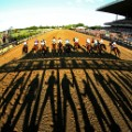 field starts the 146th running of the Belmont Stakes