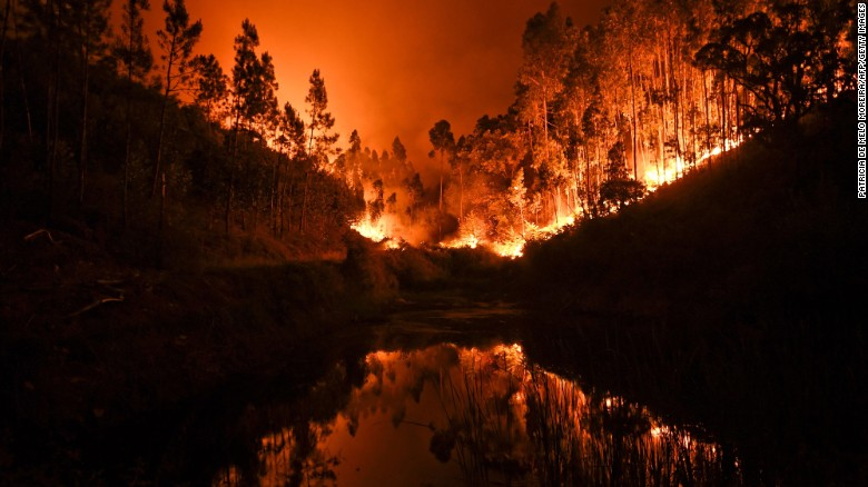 Several hundred firefighters were dispatched to tackle wildfires in central Portugal, in June 2017. The blazes left dozens of people dead.