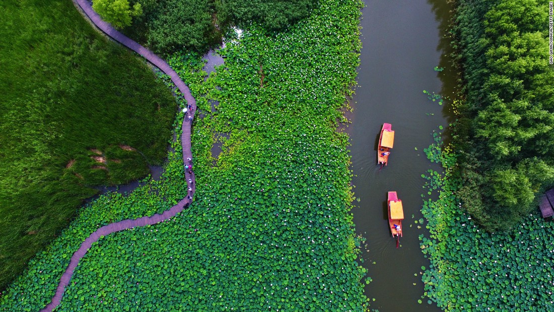 <strong>Zaozhuang, Shandong, China:</strong> Every summer, Zaozhuang City's wetland parks, especially Honghe Wetland Park -- the biggest natural wetland in northern China -- put on a grand lotus blossom display.
