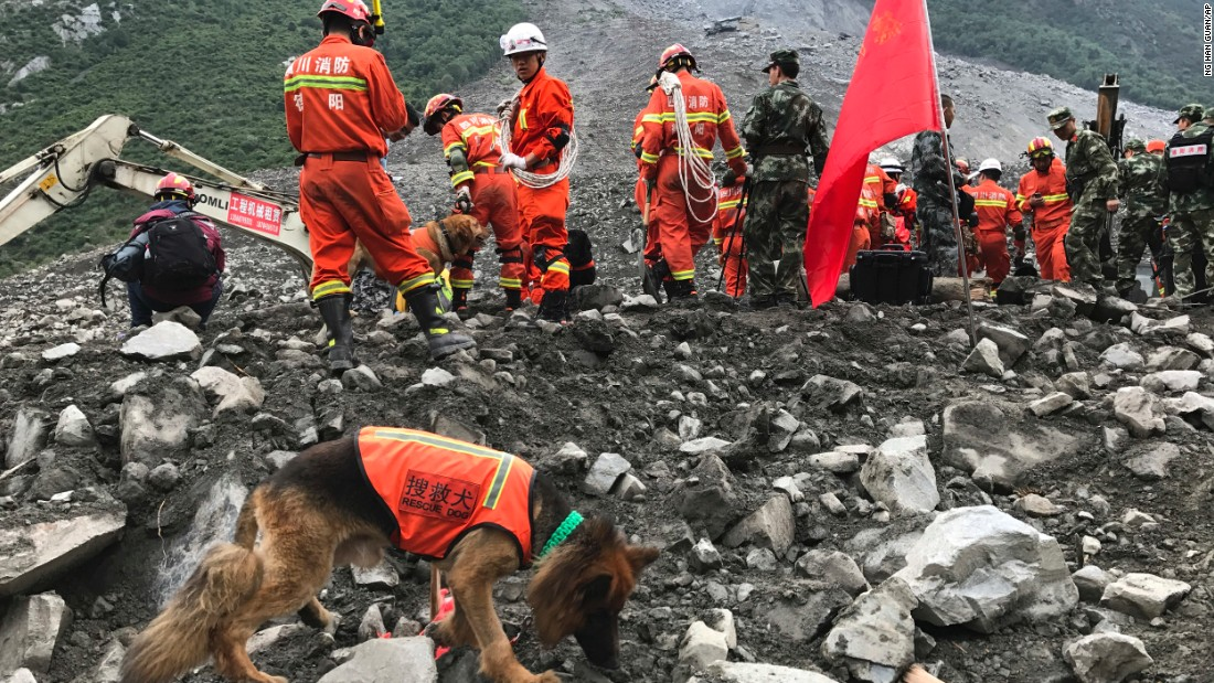 Rescuers with sniffer dogs stand near equipment digging at the site of the landslide.