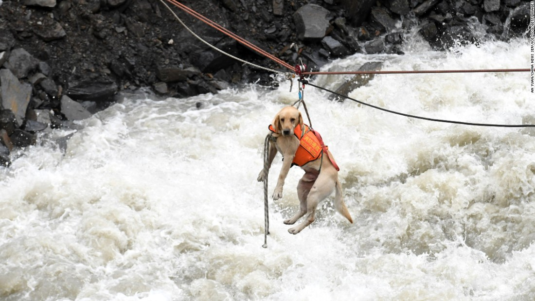"A sniffer dog is transferred across a river at a <a href=""http://www.cnn.com/2017/06/23/china/china-landslide/index.html"" target=""_blank"">landslide site in southwestern China</a> on June 25. At least 15 bodies were recovered from the rubble after the region experienced heavy rainfall."