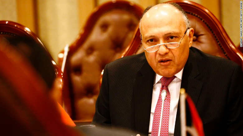 Egypt's FM: Qatar's response is disappointing