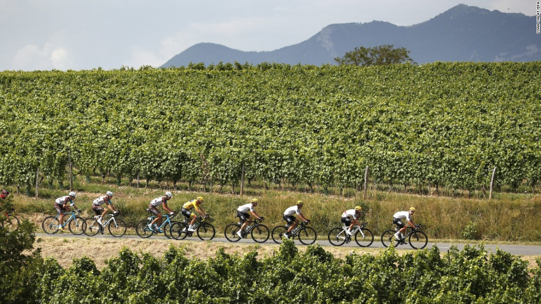 The pack of riders in action during the nine stage of the Tour de France.