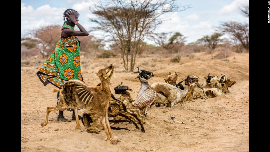 Communities in northwest Kenya are lining the dilapidated roads with carcasses of dead animals in a symbolic cry for help.