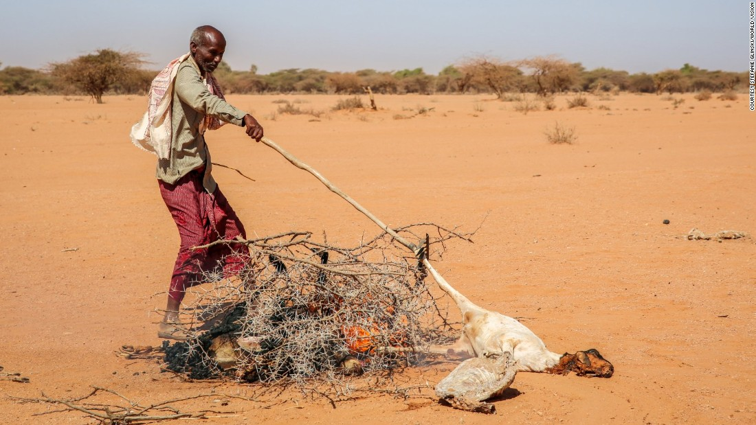 Every morning in Somalia, Saîd burns his dead goats. He has walked more than 60 miles but still can't finding enough water and food for his livestock.