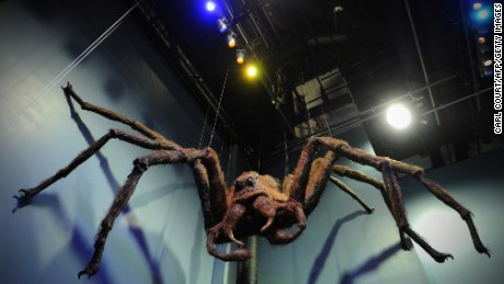 Aragog the giant spider greets visitors to a 2012 studio tour in north London.