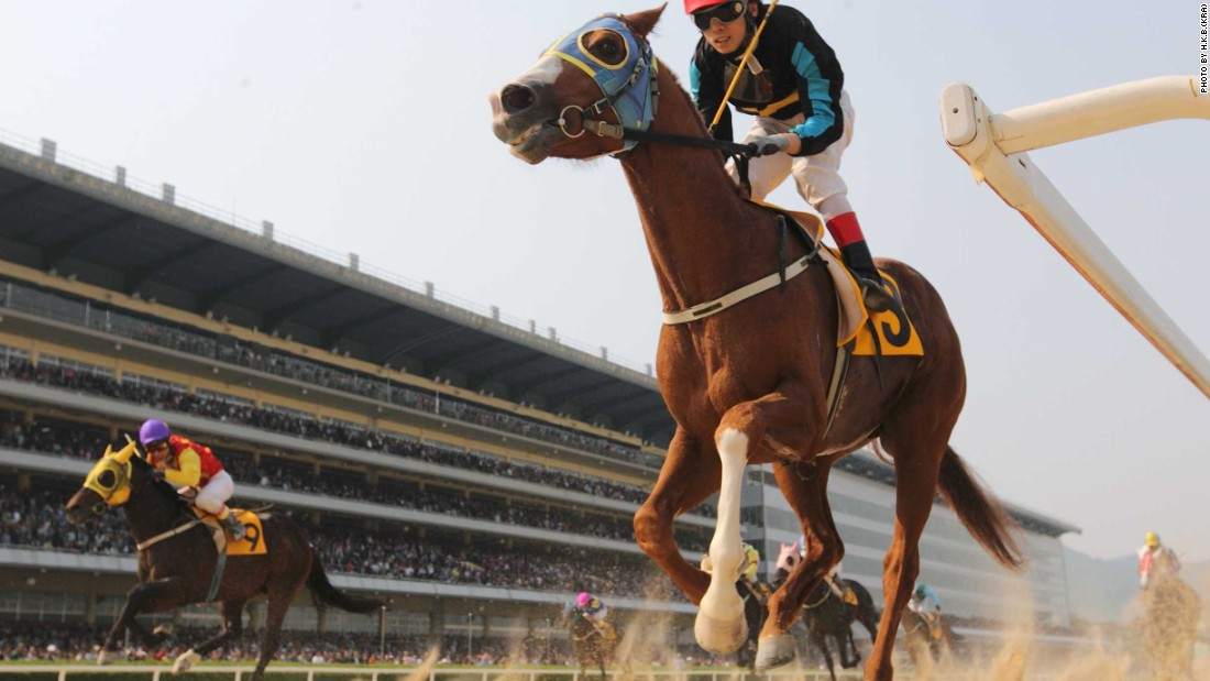 One hundred years on from the nation's first thoroughbred race, plans are in place for South Korea to become a major player in the sport.