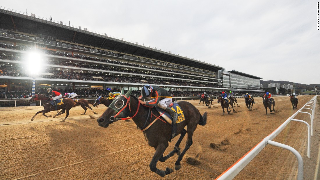 With Korean-bred horses increasingly racing in foreign lands and proving they can cut it at a high-level, don't bet against seeing one on a racetrack near you soon.