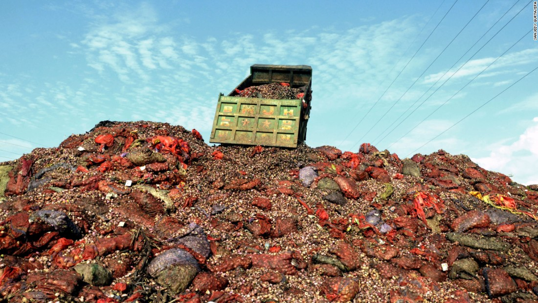 Onions are dumped near Bhopal, India, on Monday, July 31. Onion farmers in the country are facing a glut of produce and declining prices, leading the government to offer bailout deals.