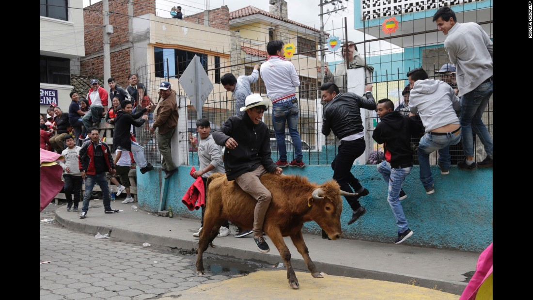 "A man rides a bull during a ""running of the bulls"" event in Pillaro, Ecuador, on Saturday, August 5. The small city set loose about 40 bulls during its annual fair."
