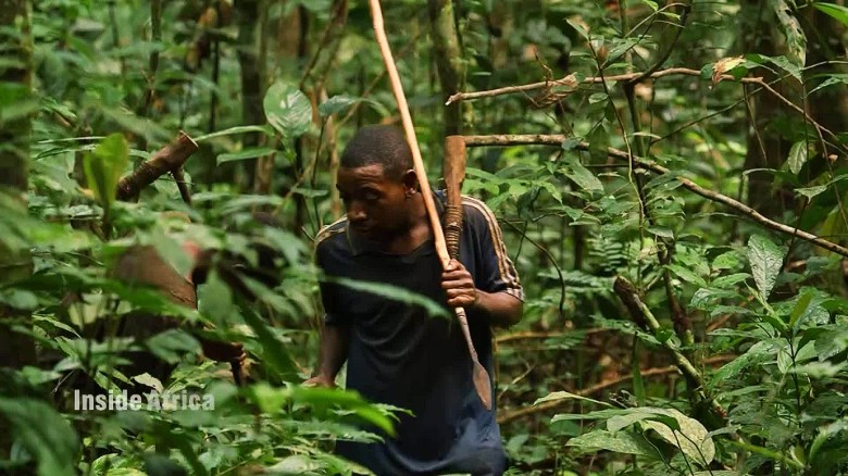 Inside Africa Living on the edge: Cameroon's Baka Pygmies A_00011003