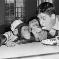 02 jerry lewis obit gallery