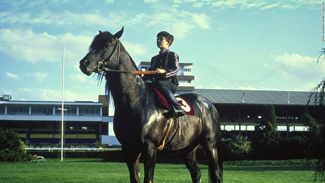 "<strong>""The Black Stallion"":</strong> Kelly Reno and Cass-Olé star in the 1979 of this classic children's story. <strong>(Amazon Prime, Hulu)  </strong>"