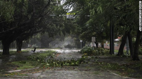 MIAMI, FL - SEPTEMBER 10:  Trees and branches are seen after being knocked down by the high winds as hurricane Irma arrives on September 10, 2017 in Miami, Florida. Florida will take a hit by the Hurricane which will come ashore at category 4.  (Photo by Joe Raedle/Getty Images)