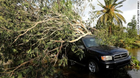 A car covered by a downed tree sits along a flooded road Monday in Naples after the hurricane swept through.
