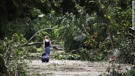 MIAMI, FL - SEPTEMBER 11: Philippa Regueira returns home through a street littered with downed trees and branches after seeking shelter in a friend's home after Hurricane Irma passed through the area on September 11, 2017 in Miami, Florida. Florida took a direct hit from the Hurricane.  (Photo by Joe Raedle/Getty Images)