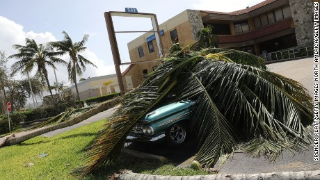 MARCO ISLAND, FL - SEPTEMBER 11: A car covered by a downed tree is shown the morning after Hurricane Irma swept through the area on September 11, 2017 in Marco Island, Florida. Hurricane Irma made another landfall near Naples yesterday after inundating the Florida Keys. Electricity was out in much of the region with localized flooding.  (Photo by Spencer Platt/Getty Images)