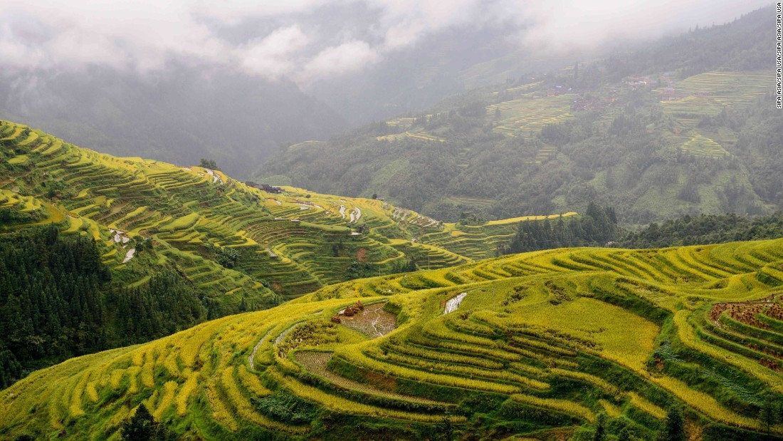 <strong>Congjiang, China:</strong> The colors of the terraced fields of Congjiang, in southwest China's Guizhou Province, are at their best in the fall. <br />