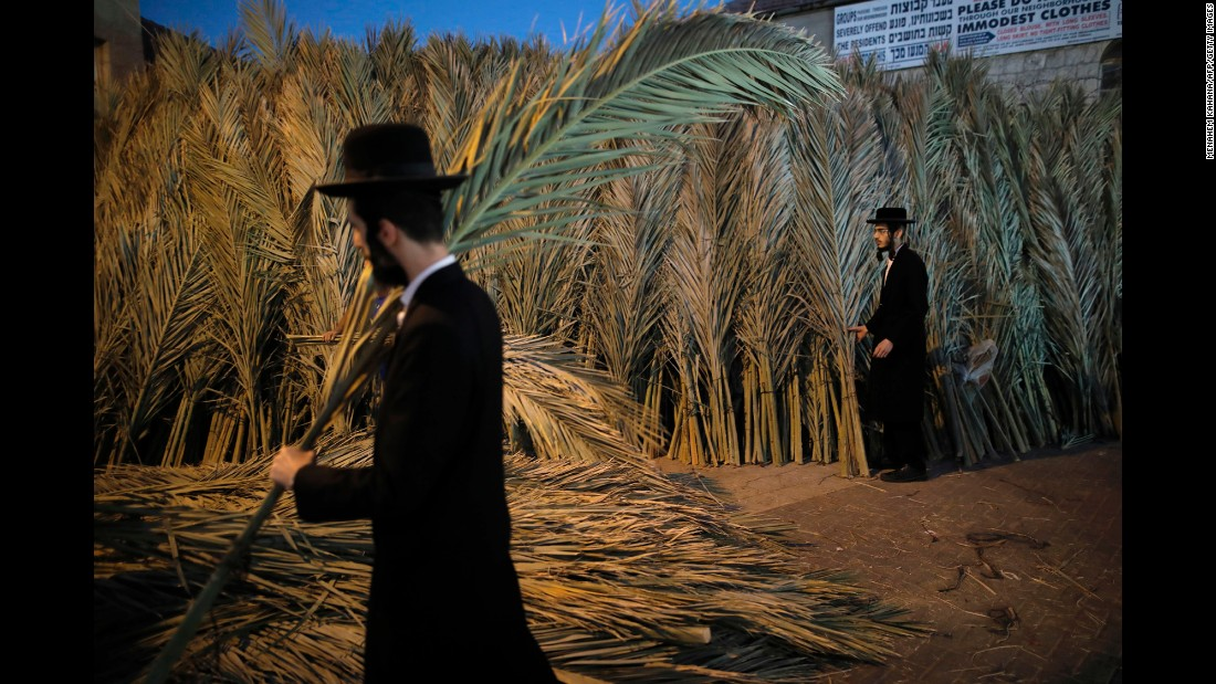 An ultra-Orthodox Jewish man carries palm branches in Jerusalem for the roof of his sukkah, a temporary hut constructed during the weeklong Jewish festival of Sukkot, on Monday, October 2.